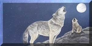 serigala dan anaknya